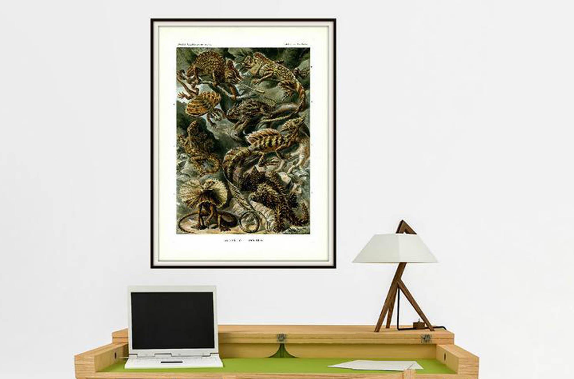 Vintage Print Reptilien