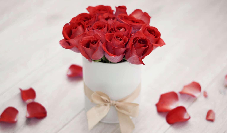 Rosenboxen kaufen – die besten Hersteller
