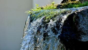 Ratgeber Wandobjekte | Wandbrunnen & Standbrunnen